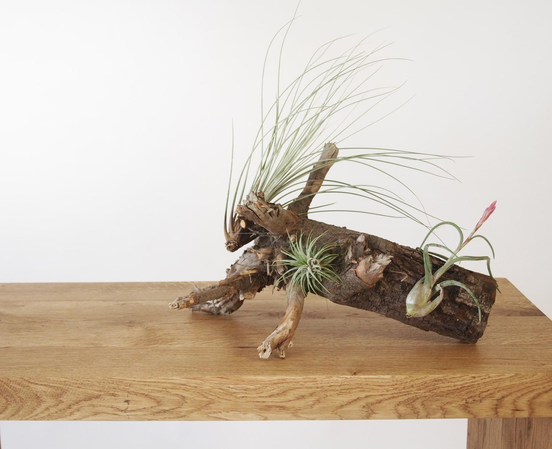 Dębowa prosta konsola z naturalnego litego drewna w minimalistycznym skandynawskim stylu